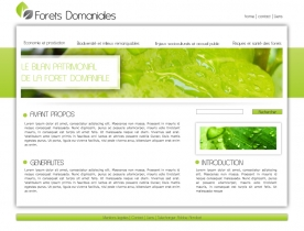 ecole Formation webdesign paris